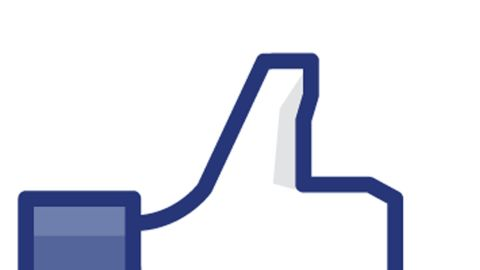 """The """"Like"""" button was introduced on Facebook in 2009, letting users show appreciation for clever status updates or pictures of their friends' cats getting into shenanigans. Cynical users demanded a """"Dislike"""" button. Facebook also launched Pages to let fans follow celebrities, sports teams or causes."""