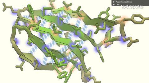 natpkg poptech 2011 foldit_00010024