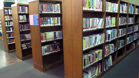 As more paperless novels begin to appear in public library catalogs, some worry they will replace books.