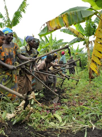 Each week the women, if they feel strong enough, get together to work on a plot of land. The crops are eaten at the center and sold at market.