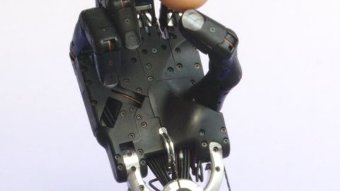 """The """"Shadow Dexterous Hand"""" is the work of the Shadow Robot Company. It says the mechanized hand can mimic all the movements of a human hand and can be fitted to various robots."""