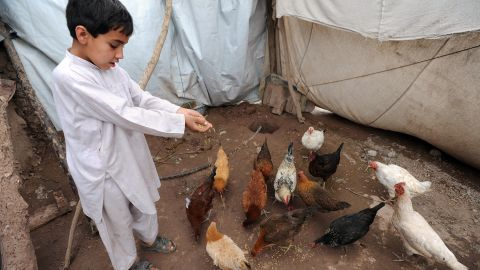 """More and more aid organizations are offering charity """"gift catalogs"""" that offer tents, water cans, even livestock and poultry for families in need. For as little as $30, <a href=""""http://gifts.rescue.org/"""" target=""""_blank"""" target=""""_blank"""">you can buy a flock of chickens for a needy family from International Rescue Committee</a> as a """"symbolic gift"""" for a friend or relative. The charity will often mail a beautiful holiday card to your loved one with a personalized message from you. So if you don't want another pair of slippers or scented lotion set this year, make sure to tell your family and friends about this great gift idea."""