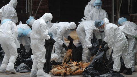 Hong Kong culled over17,000 chickens and suspended live poultry imports for 21 days after detecting the H5N1 virus.
