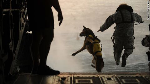 A U.S. Army soldier and his military working dog jump off the ramp of a Chinook helicopter during water training over the Gulf of Mexico
