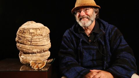 """""""Mushroom Man"""" Paul Stamets talks about the many health benefits of mushrooms, one possibly helping to cure cancer."""