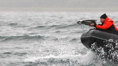 The Russian president aims at a whale with an arbalest (crossbow) to take a piece of its skin for analysis at Olga Bay on August 25, 2010.