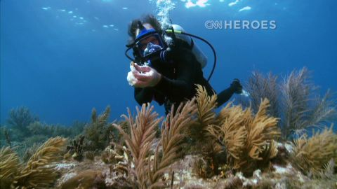 cnnheroes.coral.reefs _00013620