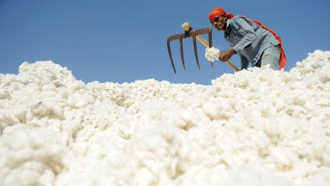 An Indian worker sorting cotton at Patel Cotton Industries, Ginners and Exporters, in Dhrangadhra, India on December 16, 2011