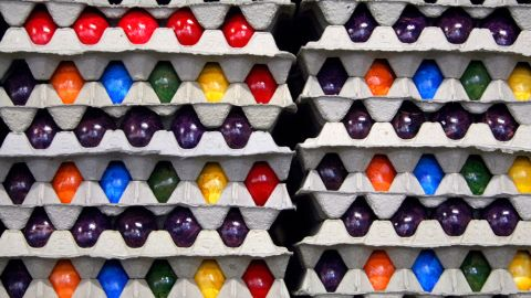 Closed loop: Scientists are aiming to create egg boxes from eggshells