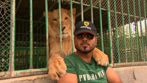 Jasim Ali with lion Teymour, whom he says he rescued from a farm where he was a neglected pet.
