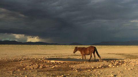 exp inside africa namib desert c_00005501