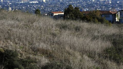 """CNN's Jennifer Wolfe says Los Angeles residents know how to get the job done without """"stressing the journey."""""""