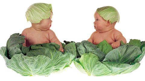 """""""Cabbage kids"""""""