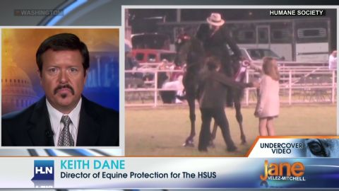exp jvm horse abuse_00002001