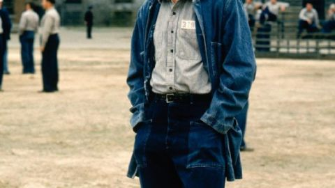 """<strong>""""The Shawshank Redemption"""":</strong> Stephen King's novella """"Rita Hayworth and Shawshank Redemption"""" appears in his 1982 collection """"Different Seasons."""" It's about a wrongly convicted banker who slyly figures out a way to escape from prison. Tim Robbins (pictured) plays the banker in the 1994 film; Morgan Freeman plays his convict friend, Red."""