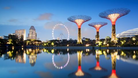 """At Singapore's """"Gardens in the Bay"""" development, man-made """"supertrees"""" collect solar energy during the day, which is used to light the magnificent structures after night fall."""