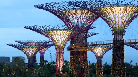 Eighteen supertrees varying from 25 to 50 meters in height combine to form a steel forest. They act as cooling ducts for nearby conservatories, collect rainwater and 11 of them have solar photovoltaic systems to convert sunlight into energy.