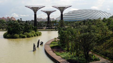 """In contrast to the dense urban environment of skyscrapers and high-rise buildings in Singapore, """"Gardens by the Bay"""" is part of the government's overall strategy to transform Singapore into a """"city in a garden."""""""