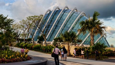The Cloud Forest biome is the larger of two climate-controlled conservatories. It features a 30-meter-high waterfall and more than 130,000 plants from tropical climes.