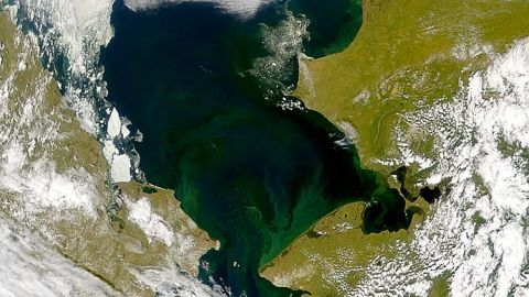 A satellite image of the Chukchi Sea, between Alaska and Russia, shows phytoplankton bloom (in green).