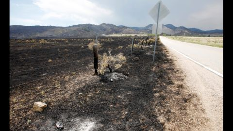 Flames scorched this area outside of Fort Collins where the High Park Fire has burned out, June 19.