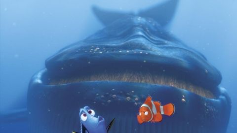 """""""Finding Nemo's"""" Dory, who starred in the 2003 Pixar film, might suffer from short-term memory loss, but the brave little regal tang wasn't afraid to stand up to sharks, jellyfish and whales on the way to P. Sherman, 42 Wallaby Way, Sydney."""