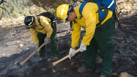 A crew mops up a day after a Little Bear Fire burn operation on June 15 at Lincoln National Forest.