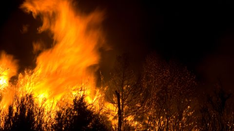 The flames appear to take on a life of their own at Lincoln National Forest this month.