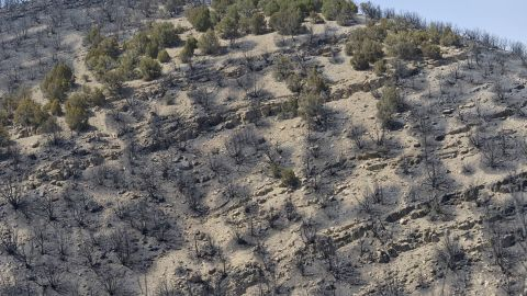 Burned-out terrain from the Dump Fire fills a hillside near Saratoga Springs, Utah on Saturday.