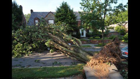 An uprooted tree blocks a street in the American University neighborhood of Washington.