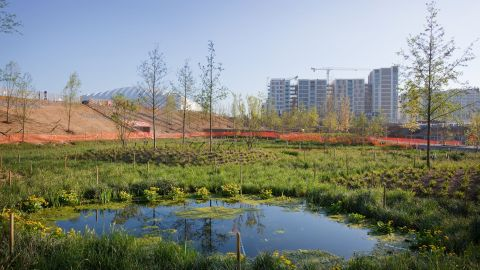 More than 4,000 trees, 74,000 plants and 300,000 wetland plants have been used on 500-acre site.