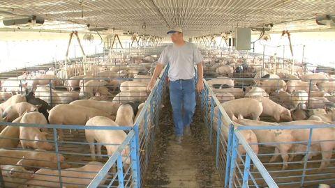 welch.drought.hog.farmers _00002727