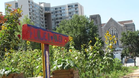 At Wheat Street Gardens, farmers see a line connecting their work with that of Auburn Avenue's most famous residents.