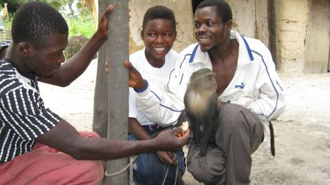 Georgette's monkey was well-known to local hunters but she lives in a part of DR Congo that is among the least biologically explored forests.