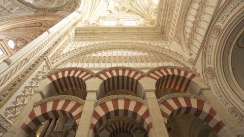 great buildings zaha hadid olympics architecture_00011814