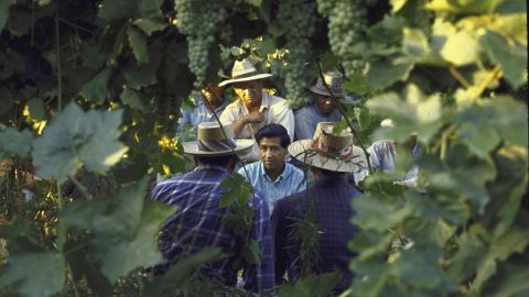 On behalf of his group, Chavez talks with grape pickers during a national boycott of California grapes in 1965.