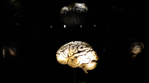 """Scientists have learned more about the <a href=""""http://www.ninds.nih.gov/disorders/brain_basics/know_your_brain.htm"""" target=""""_blank"""" target=""""_blank"""">brain</a> in the past 10 years than in all other time periods combined. Take a look at these discoveries to see how to improve your memory and boost your mental power."""