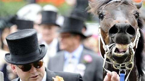 Australian mare Black Caviar, pictured with trainer Peter Moody, remains unbeaten in 22 races.