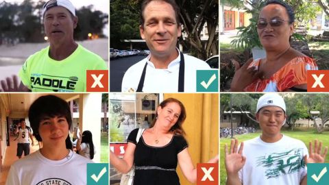 Using the Internet, the public convinced three of these nonvoters in Hawaii to vote in the upcoming election.