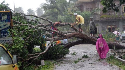 Workers clear a road with a fallen tree after Typhoon Bophal hit the city of Tagum, Davao del Norter province, on the southern island of Mindanao on December 4, 2012. Typhoon Bopha smashed into the southern Philippines early December 4, as more than 40,000 people crammed into shelters to escape the onslaught of the strongest cyclone to hit the country this year. AFP PHOTO (Photo credit should read AFP/AFP/Getty Images)