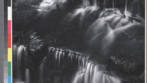 Fern Spring, Dusk, Yosemite Valley, about 1961.