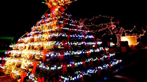 """""""This was the most unusual tree I had ever seen,"""" said iReporter, <a href=""""http://ireport.cnn.com/people/MarieSager"""">Marie Sager</a>, who shot this impressive image of creative festive decorations in Provincetown, Massachusetts. """"It was built with lobster cages, decorated with plastic ... seashells and topped with nautical items. Perfect for a town by the sea."""""""