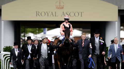 Australian horse Black Caviar also hit headlines after winning her 22nd consecutive race. These were champions of a caliber rarely seen in one generation, let alone competing at the peaks of their careers in the same year.