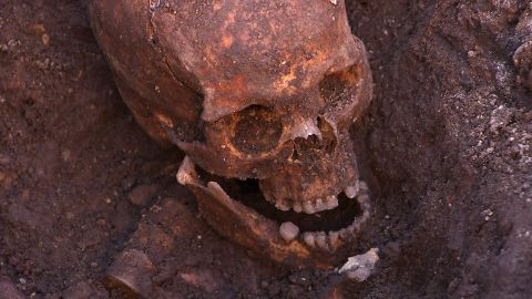 Human remains found in trench one of the Grey Friars dig.