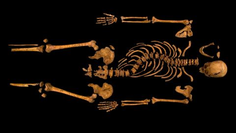 Mitochondrial DNA extracted from the bones was matched to Michael Ibsen, a Canadian cabinetmaker and direct descendant of Richard III's sister, Anne of York.