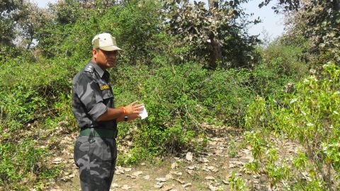 An Indian security official looks over the site that a Swiss woman was raped the night before near Gwalior on March 16, 2013.