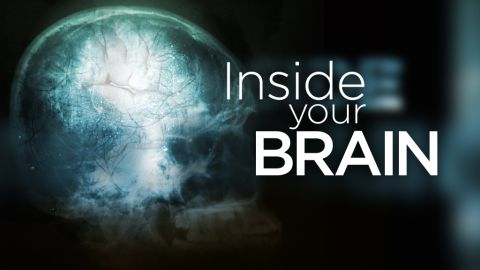 """This is a part of CNN Health's """"Inside Your Brain"""" series."""