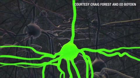 orig.ideas.brain.mapping_00004311.jpg