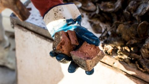 A piece of brick that was dumped in to the bayou in hopes of reinvigorating the oyster beds.
