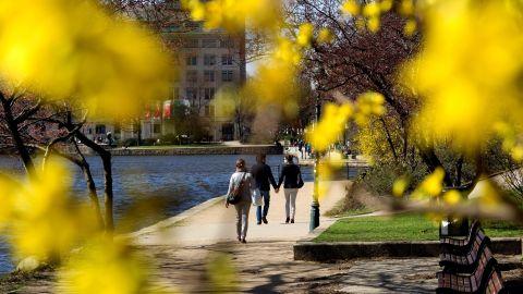 Sunshine bathes the banks of Inner Alster Lake in Hamburg, Germany, on Thursday, April 18.